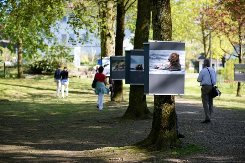 Ausstellung Schlossallee