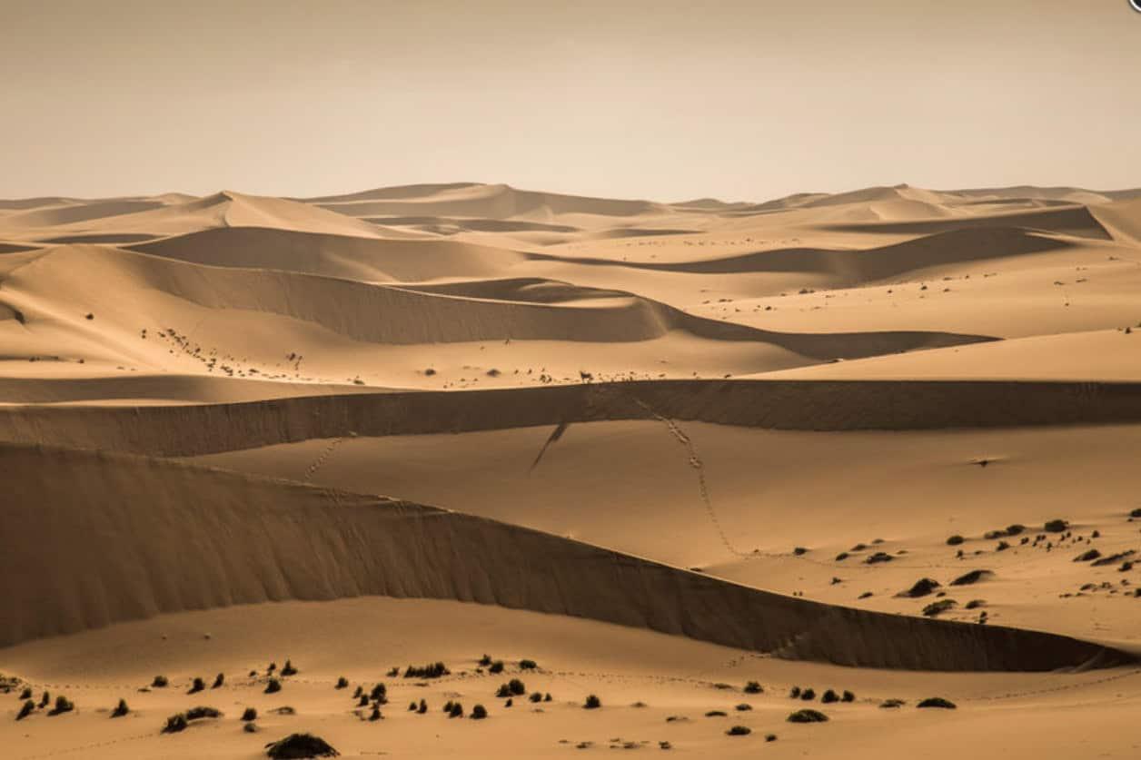 Rolf Gemperle Namib Durchquerung 04
